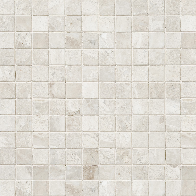 Diana Royal Honed 30,5x30,5 1x1 Marble Mosaics