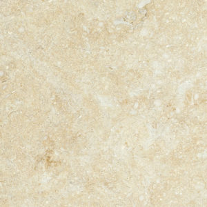 Seashell Honed Limestone Tiles 10x10
