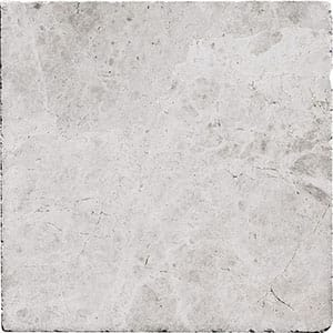 Silver Shadow Tumbled Marble Tiles